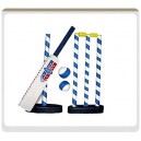 Indoor cricket set